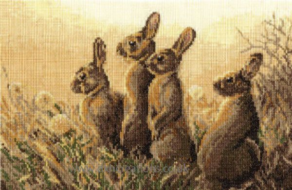 Dawn Alert Cross Stitch Kit